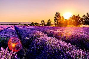 formation réseaux sociaux Provence